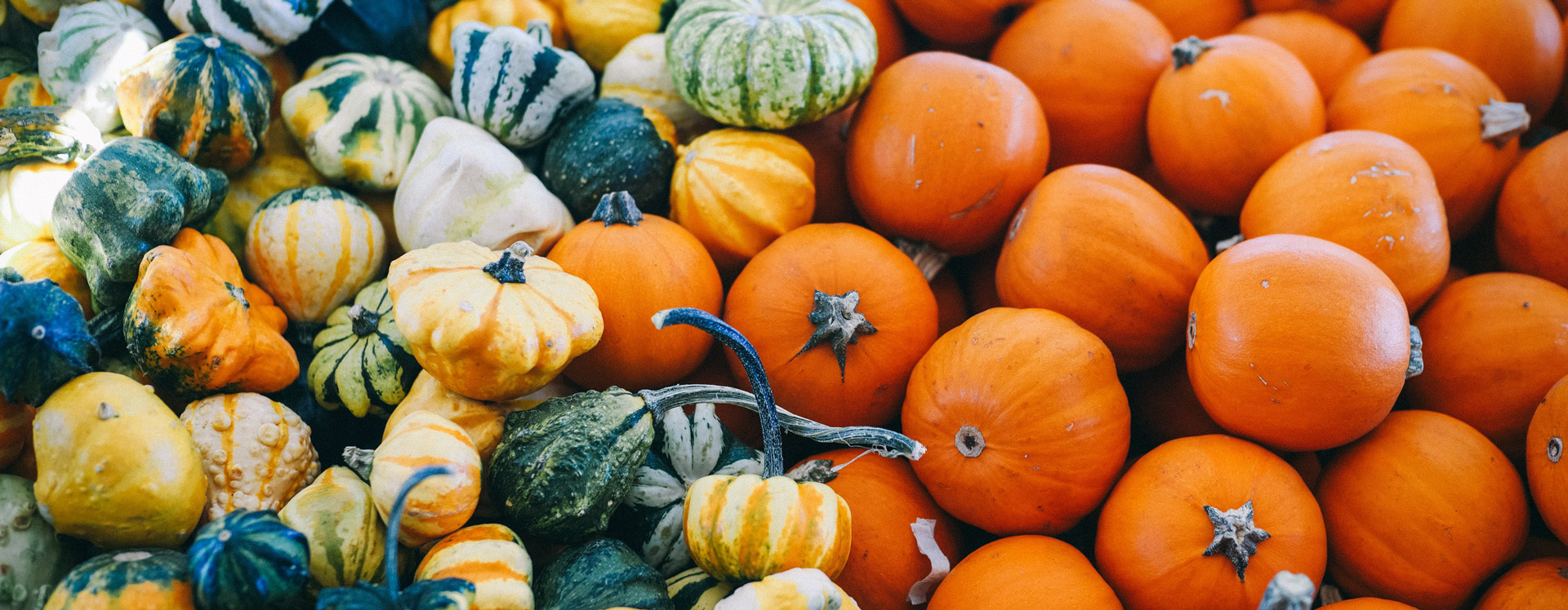 Halloween origins and overseas traditions